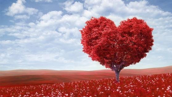 valentines-day-1